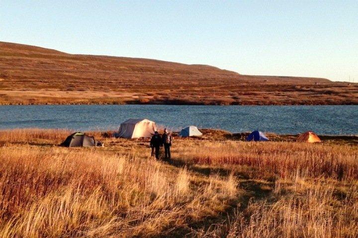 Изменение климата вдвое сократило биоразнообразие озера в Арктике