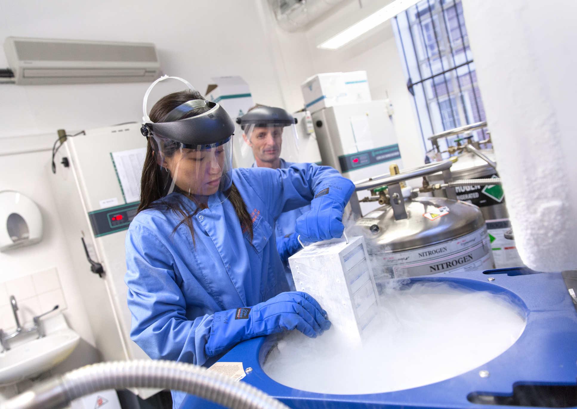 Как ученые работают над вакциной против COVID-19
