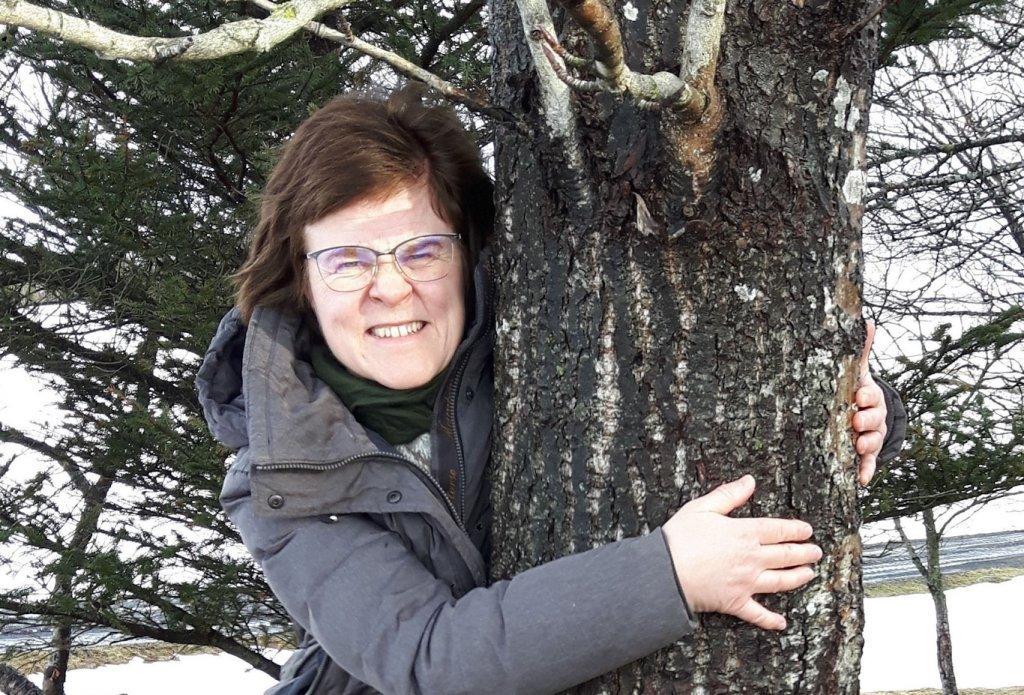 Исландские лесники советуют обнимать деревья во время эпидемии