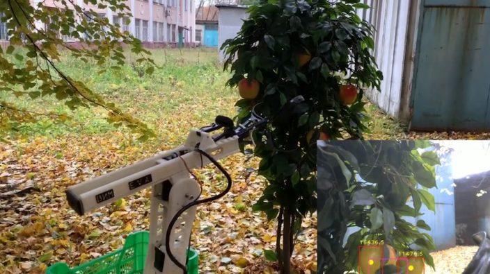 Российский робот распознает яблоки с точностью 97%